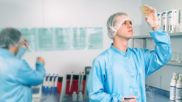ITH Pharma - Quality Control 1